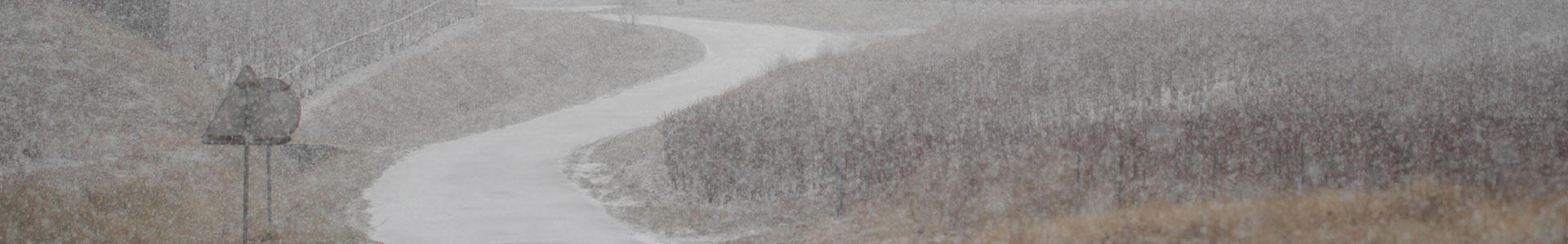 bannière vigne sous la neige